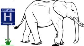 Child Circumcision: An Elephant in the Hospital